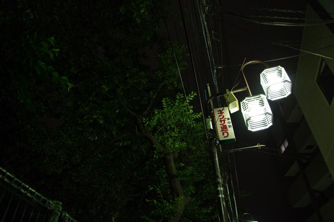 20080529 [Thu]