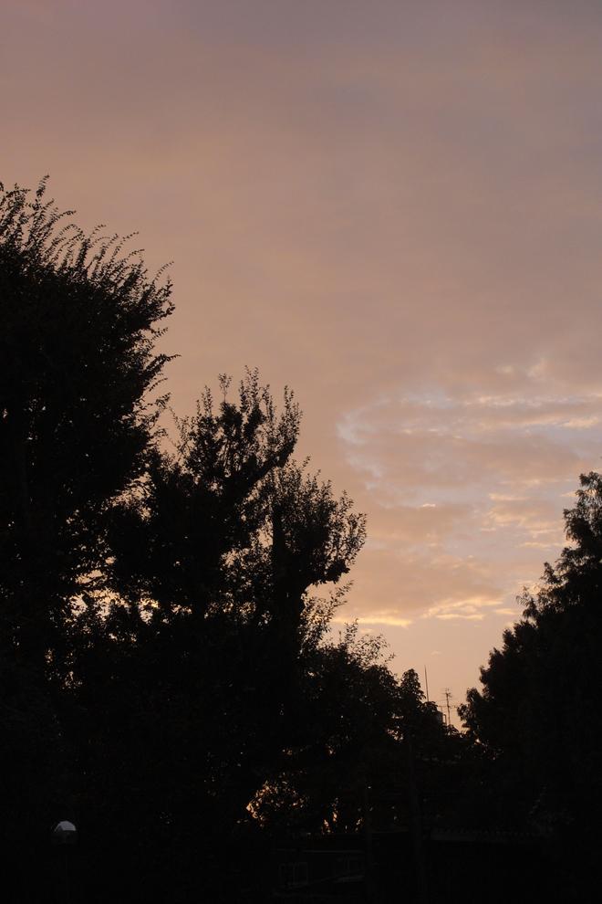20090927 [Sun]